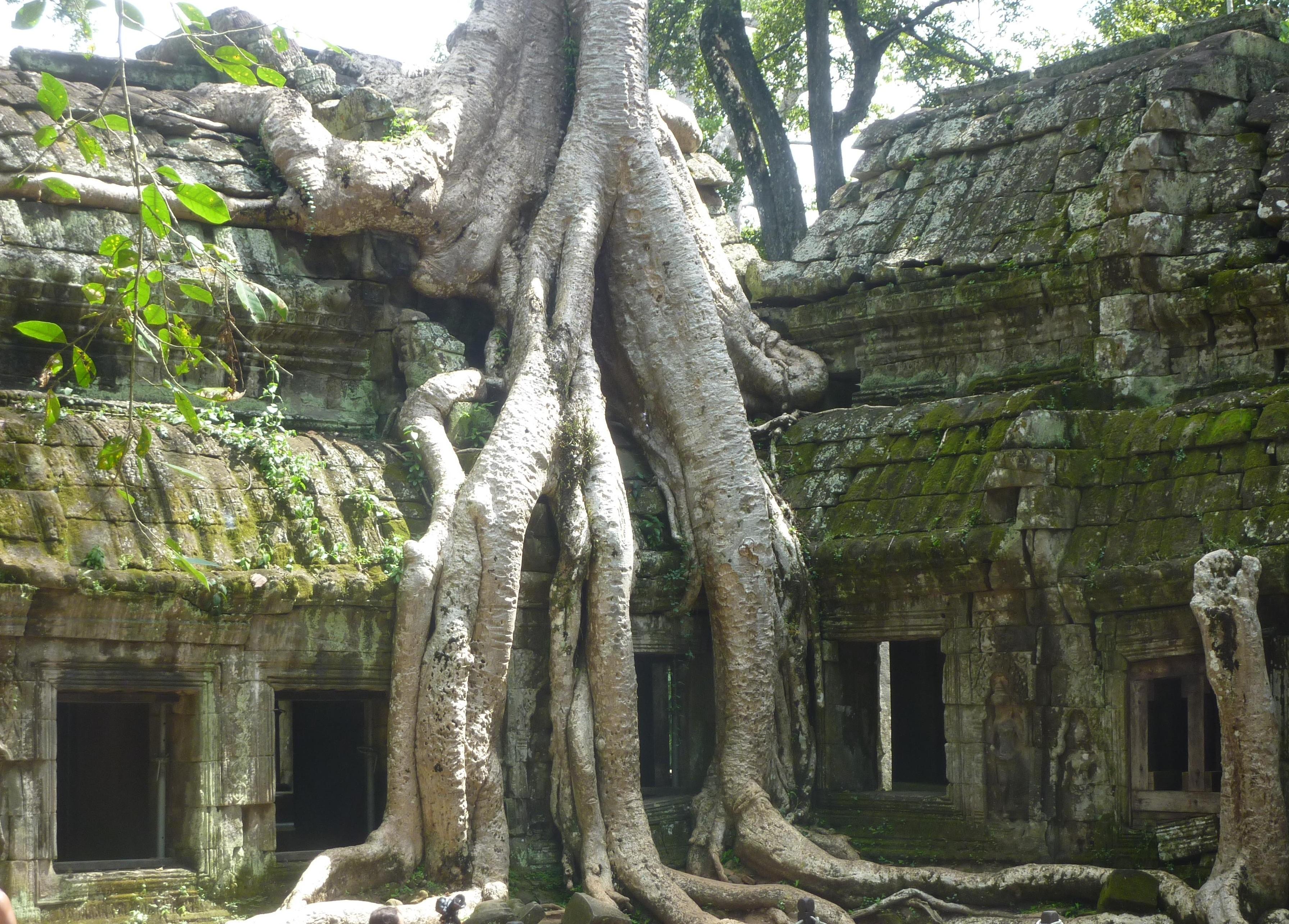 Ta Prohm aka The Tomb Raider Temple