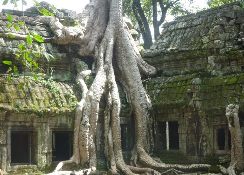 Ta Prohm aka The Tomb Raider Temple