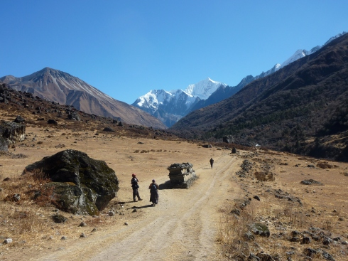 The Trail out of Langtang