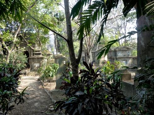 South Street Boneyard